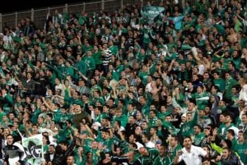 Maccabi Haifa soccer fans. Credit: Sharon Bokov.