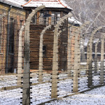 Barbed wires surround the cabins of the Auschwitz-Birkenau Concentration Camp. Photo courtesy of Flash90/Isaac Harari